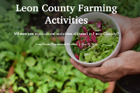Leon County Farming Activities Thumbnail